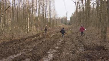 Wycięto las na ich działce. Nikt nie pytał o zgodę